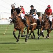 wpid-Veuve-Clicquot-Gold-Cup-Quarter-Final-2011-La-Bamba-de-Areco-v-Zacara-3.jpg