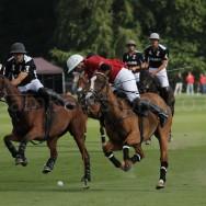 wpid-Veuve-Clicquot-Gold-Cup-Quarter-Final-2011-La-Bamba-de-Areco-v-Zacara-4.jpg